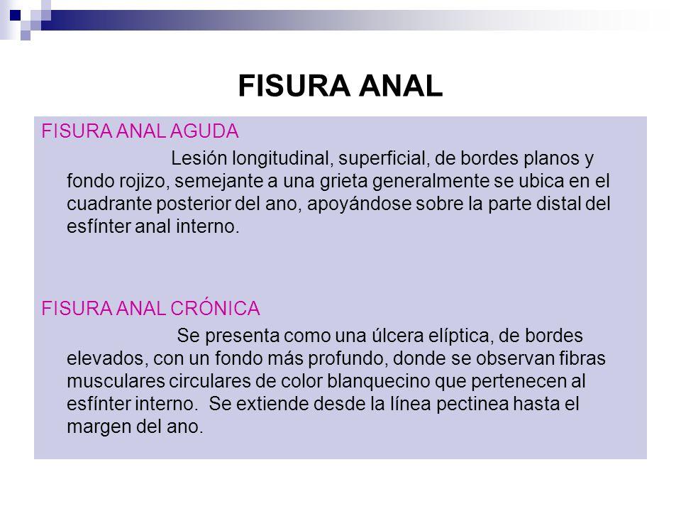 FISURA ANAL FISURA ANAL AGUDA