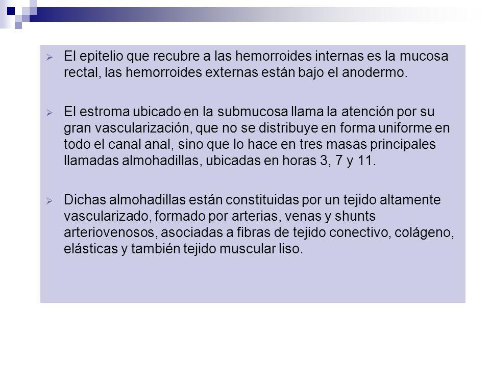 El epitelio que recubre a las hemorroides internas es la mucosa rectal, las hemorroides externas están bajo el anodermo.