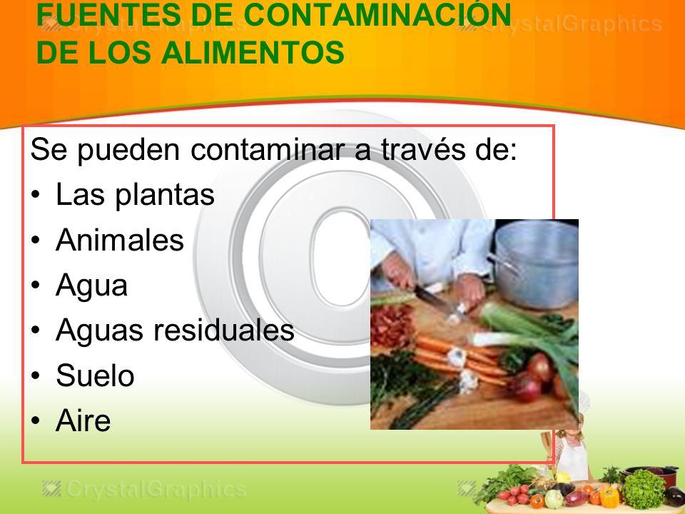Higiene y manipulacion de alimentos ppt video online descargar - Fuentes de contaminacion de los alimentos ...