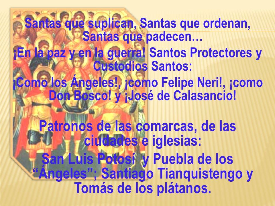 Patronos de las comarcas, de las ciudades e iglesias: