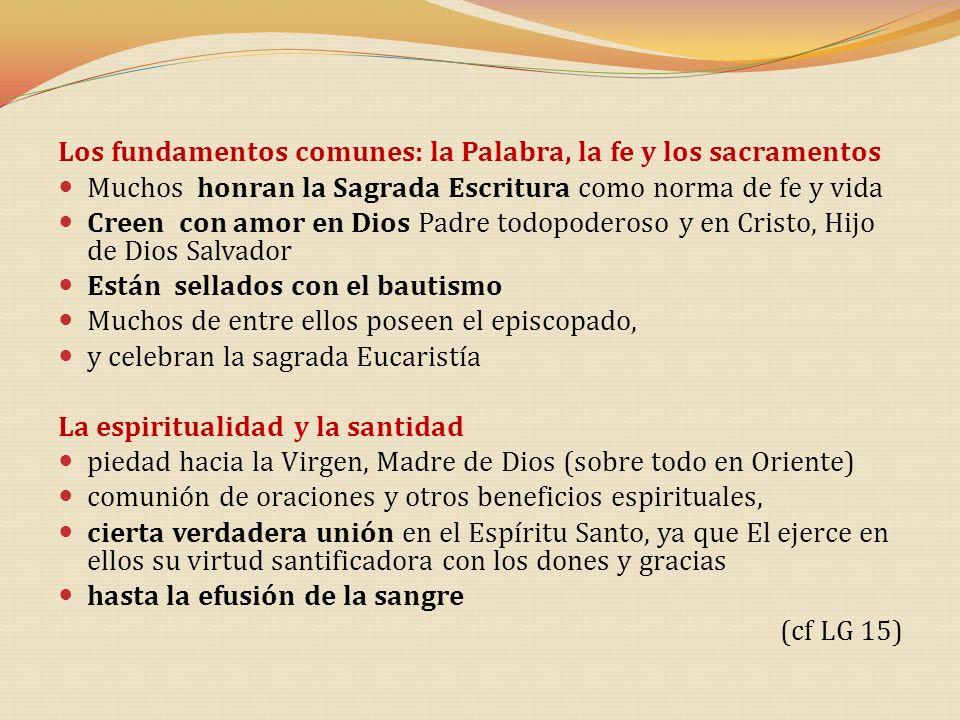 Los fundamentos comunes: la Palabra, la fe y los sacramentos