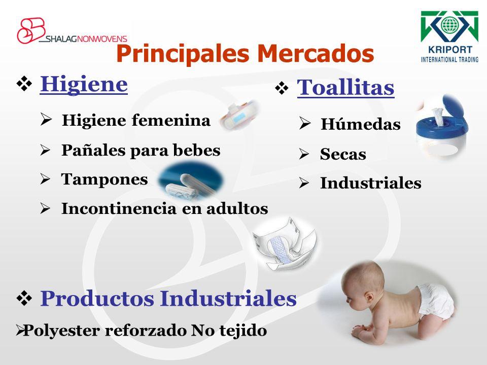 Principales Mercados Higiene Productos Industriales Toallitas