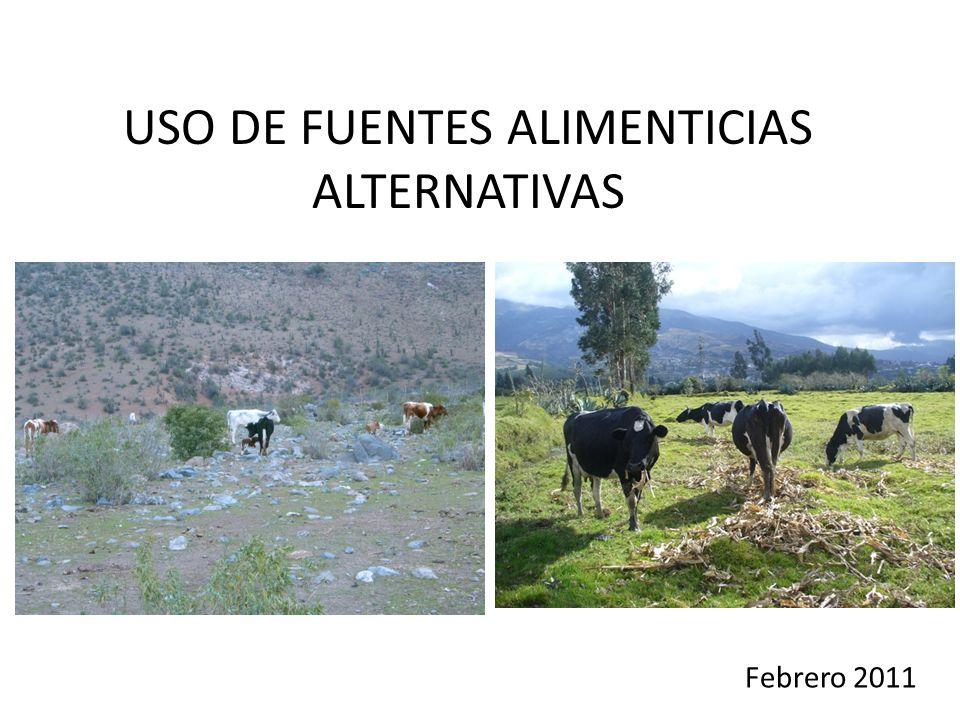USO DE FUENTES ALIMENTICIAS ALTERNATIVAS