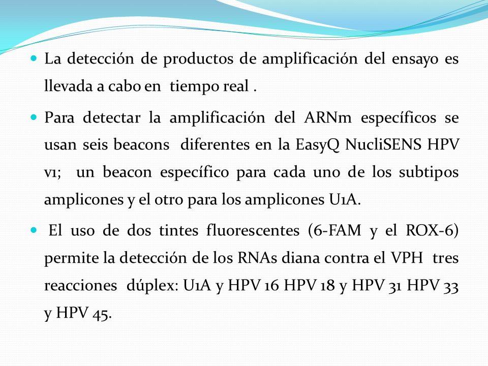 La detección de productos de amplificación del ensayo es llevada a cabo en tiempo real .
