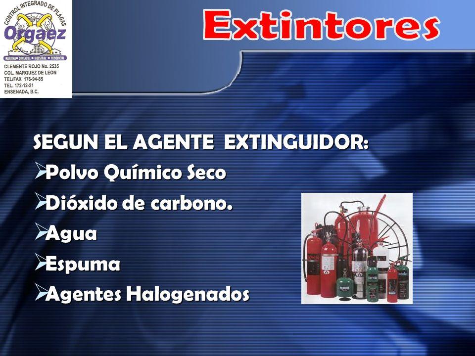 Extintores SEGUN EL AGENTE EXTINGUIDOR: Polvo Químico Seco