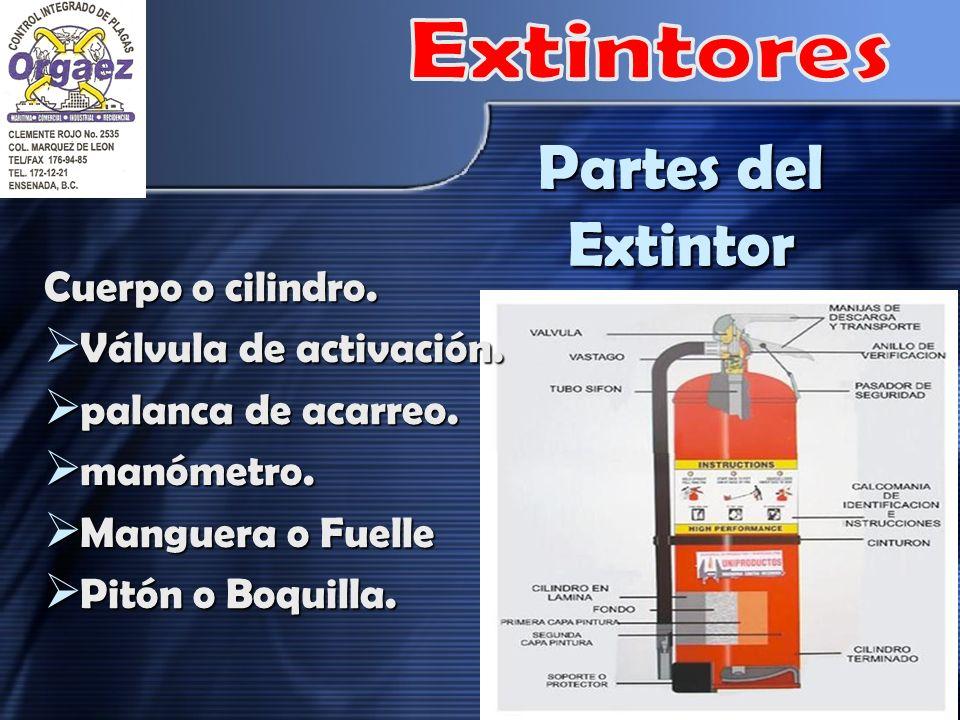 Partes del Extintor Extintores Cuerpo o cilindro.