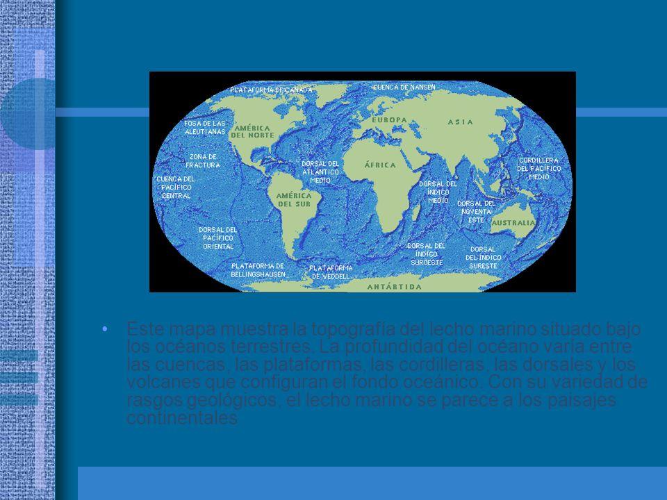 Este mapa muestra la topografía del lecho marino situado bajo los océanos terrestres.