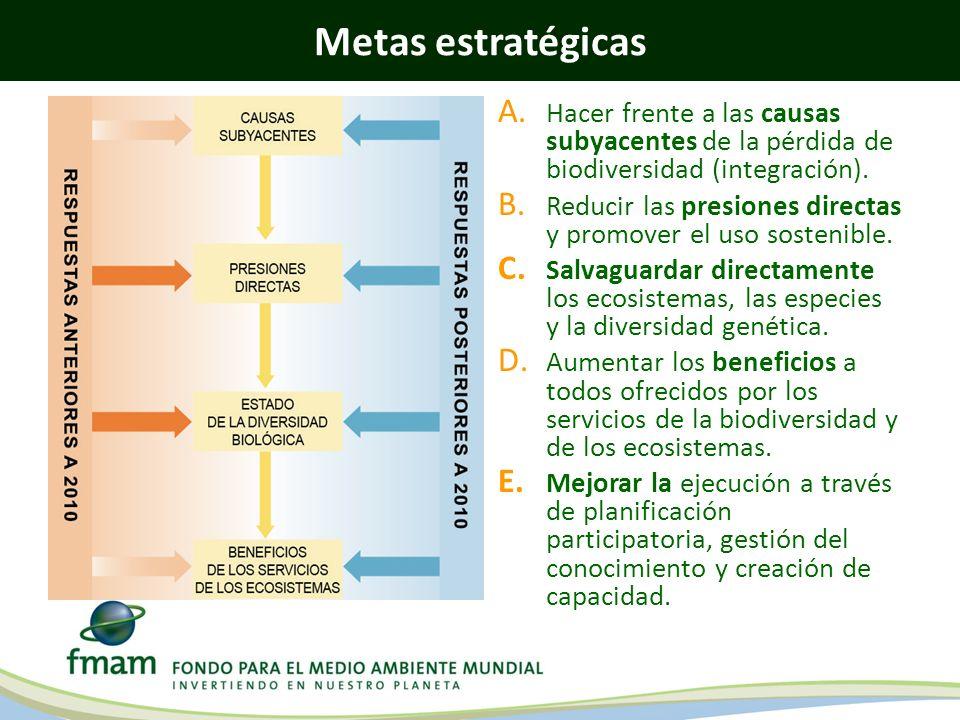 Metas estratégicas Hacer frente a las causas subyacentes de la pérdida de biodiversidad (integración).