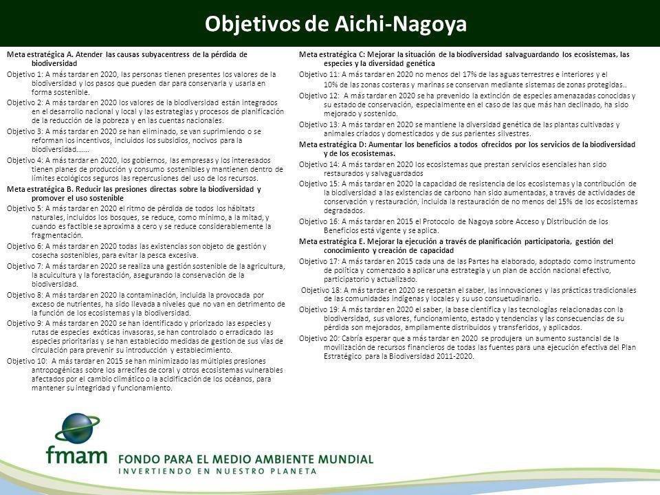Objetivos de Aichi-Nagoya