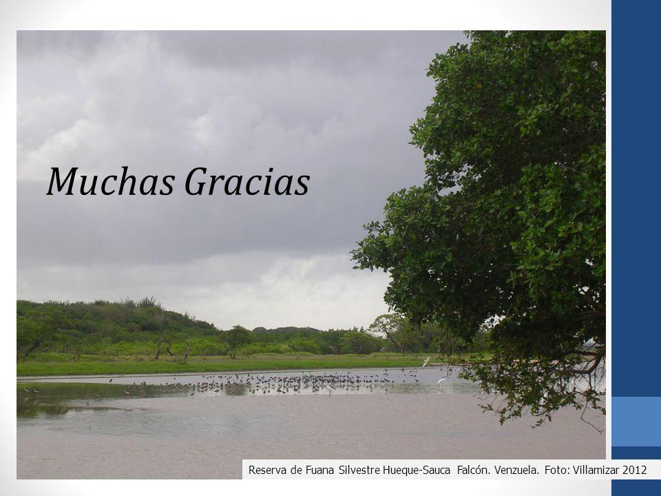 Muchas Gracias Reserva de Fuana Silvestre Hueque-Sauca Falcón. Venzuela. Foto: Villamizar 2012
