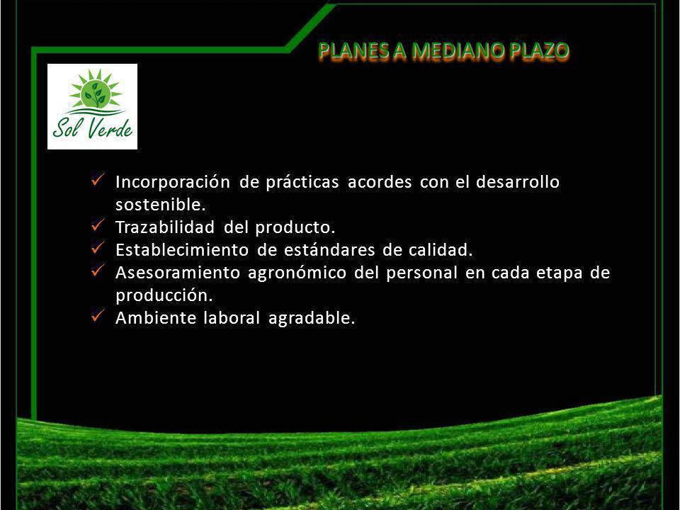Planes a mediano plazo Incorporación de prácticas acordes con el desarrollo sostenible. Trazabilidad del producto.
