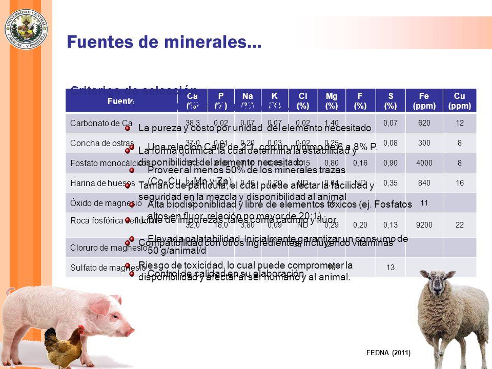 Fuentes de minerales… Una buena mezcla mineral...