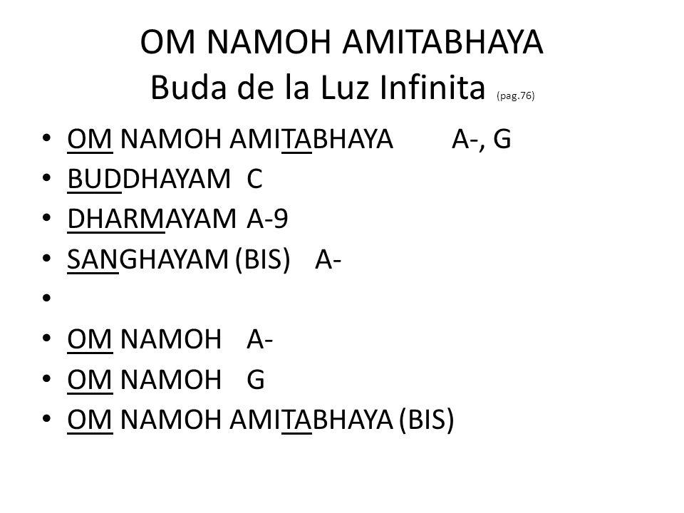 OM NAMOH AMITABHAYA Buda de la Luz Infinita (pag.76)