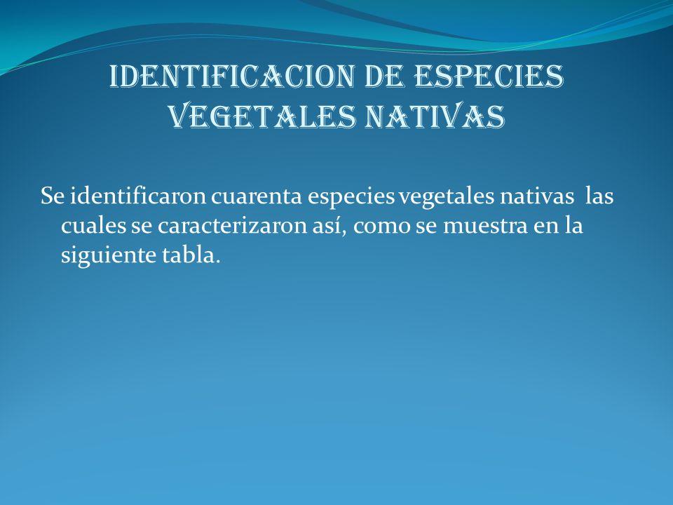 IDENTIFICACION DE ESPECIES VEGETALES NATIVAS