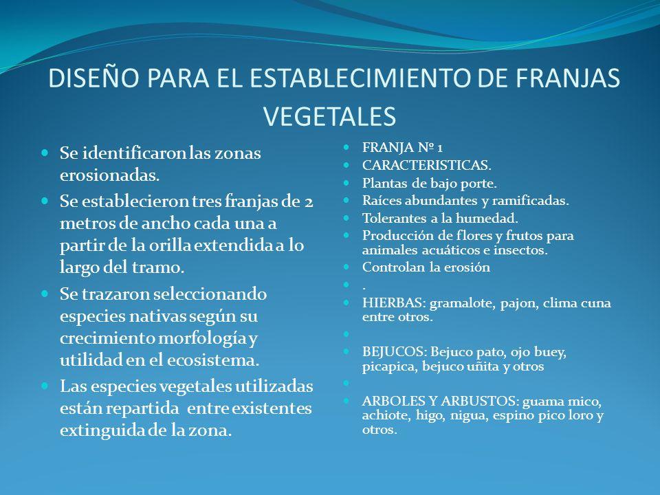 DISEÑO PARA EL ESTABLECIMIENTO DE FRANJAS VEGETALES