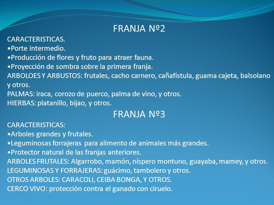 FRANJA Nº2 FRANJA Nº3 CARACTERISTICAS. Porte intermedio.