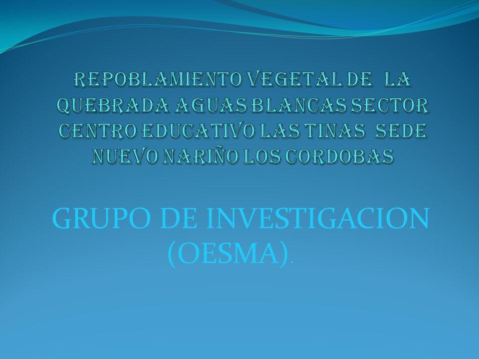 GRUPO DE INVESTIGACION (OESMA).