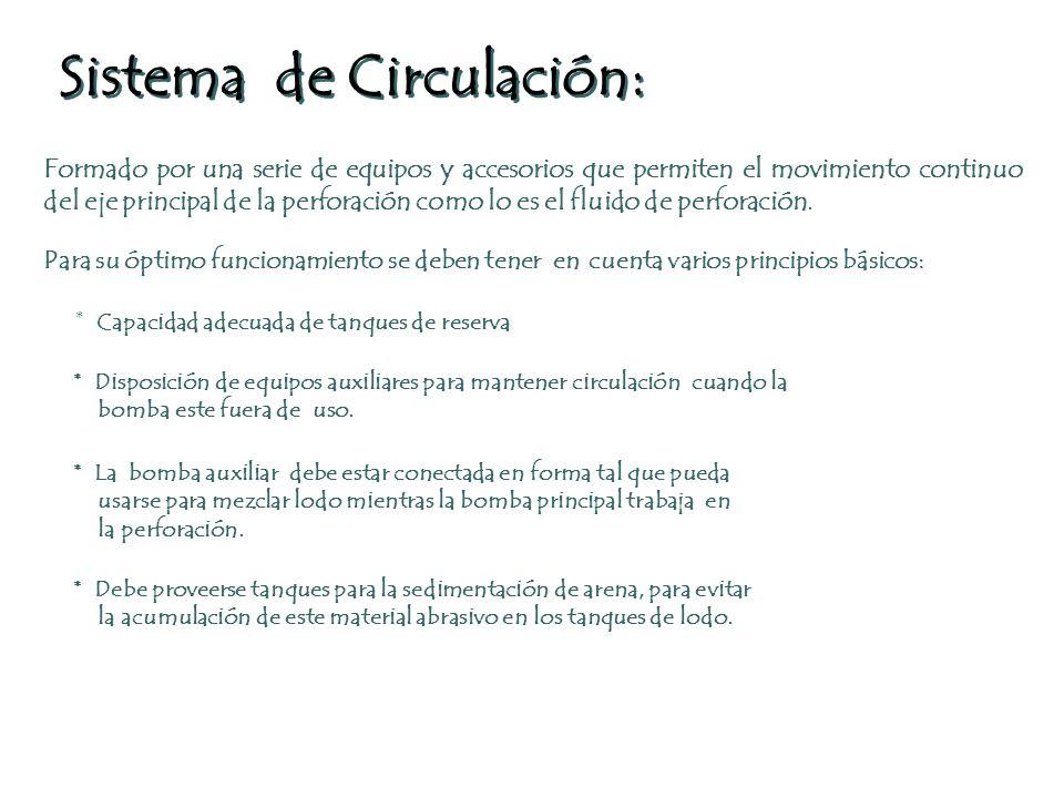 Sistema de Circulación: