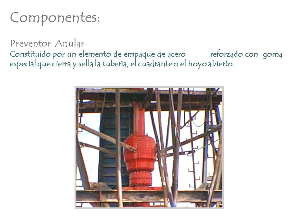 Componentes: Preventor Anular :