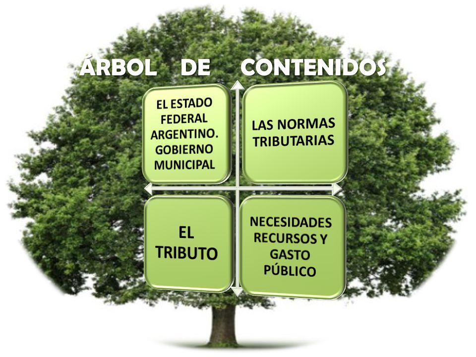 EL TRIBUTO LAS NORMAS TRIBUTARIAS
