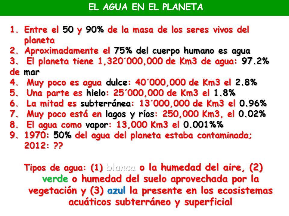 EL AGUA EN EL PLANETA Entre el 50 y 90% de la masa de los seres vivos del planeta. Aproximadamente el 75% del cuerpo humano es agua.