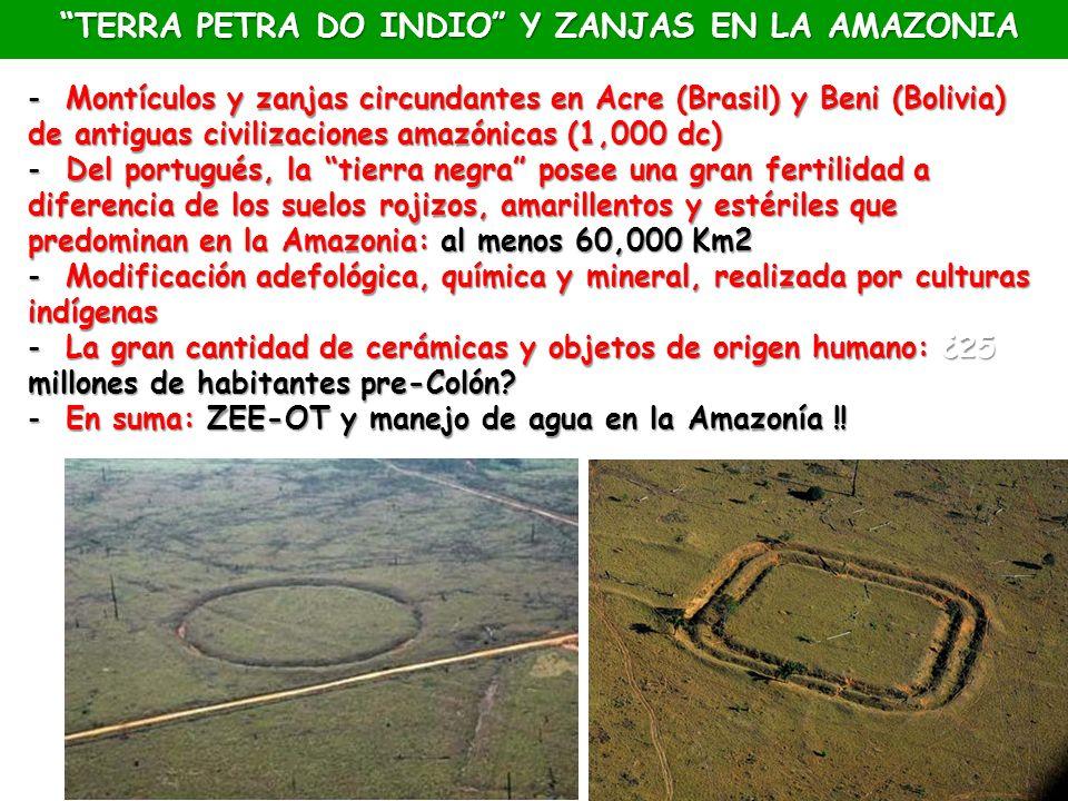 TERRA PETRA DO INDIO Y ZANJAS EN LA AMAZONIA