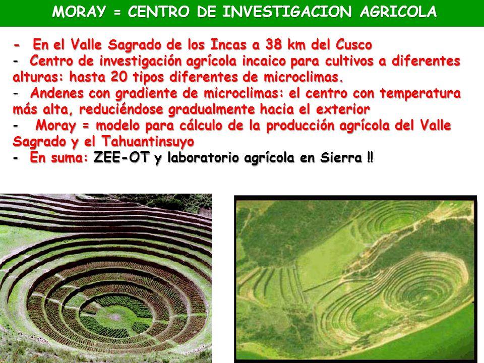 MORAY = CENTRO DE INVESTIGACION AGRICOLA