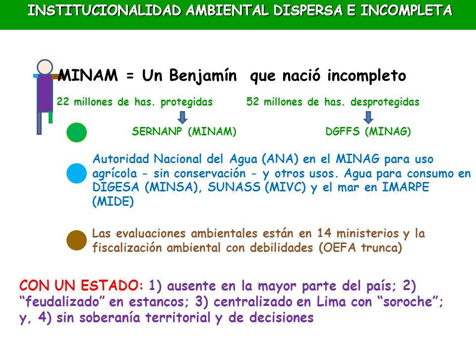INSTITUCIONALIDAD AMBIENTAL DISPERSA E INCOMPLETA