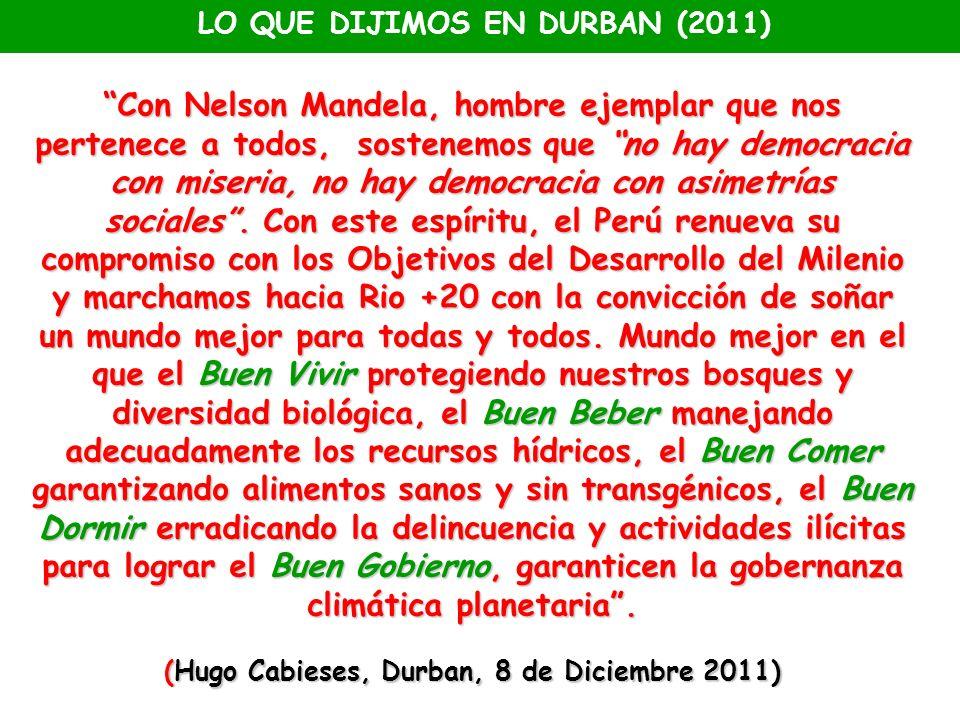 LO QUE DIJIMOS EN DURBAN (2011)