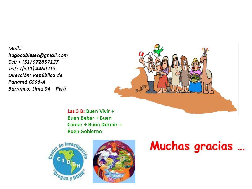 Muchas gracias … Mail:: hugocabieses@gmail.com Cel: + (51) 972857127