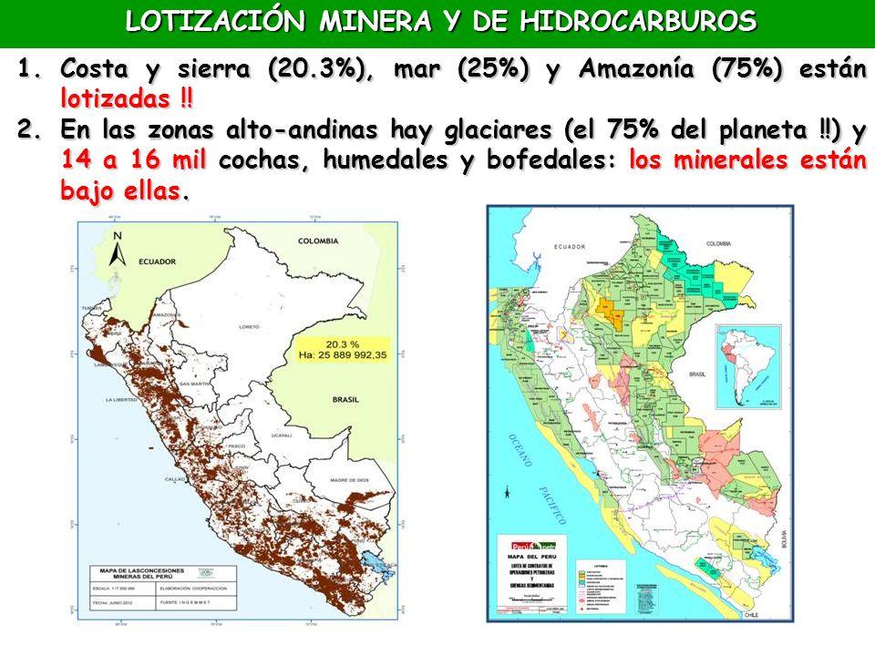 LOTIZACIÓN MINERA Y DE HIDROCARBUROS