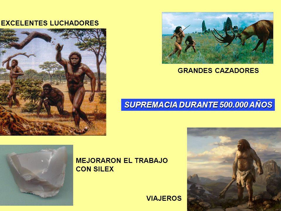 SUPREMACIA DURANTE 500.000 AÑOS