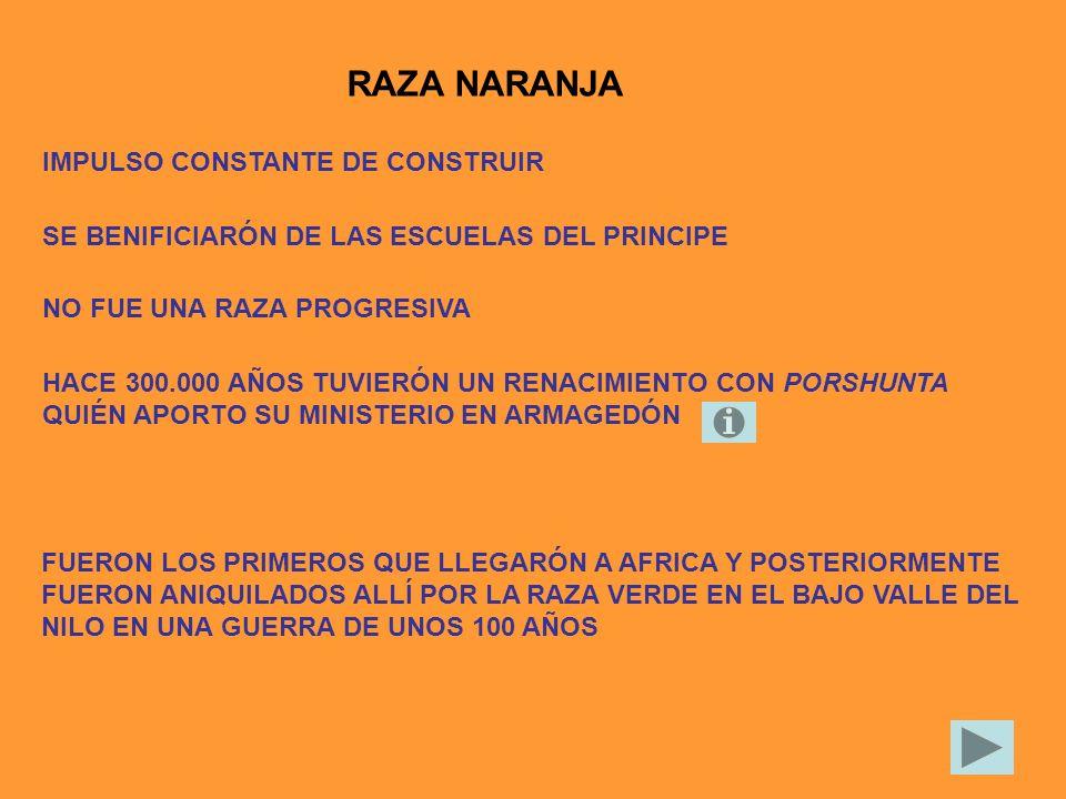 RAZA NARANJA IMPULSO CONSTANTE DE CONSTRUIR