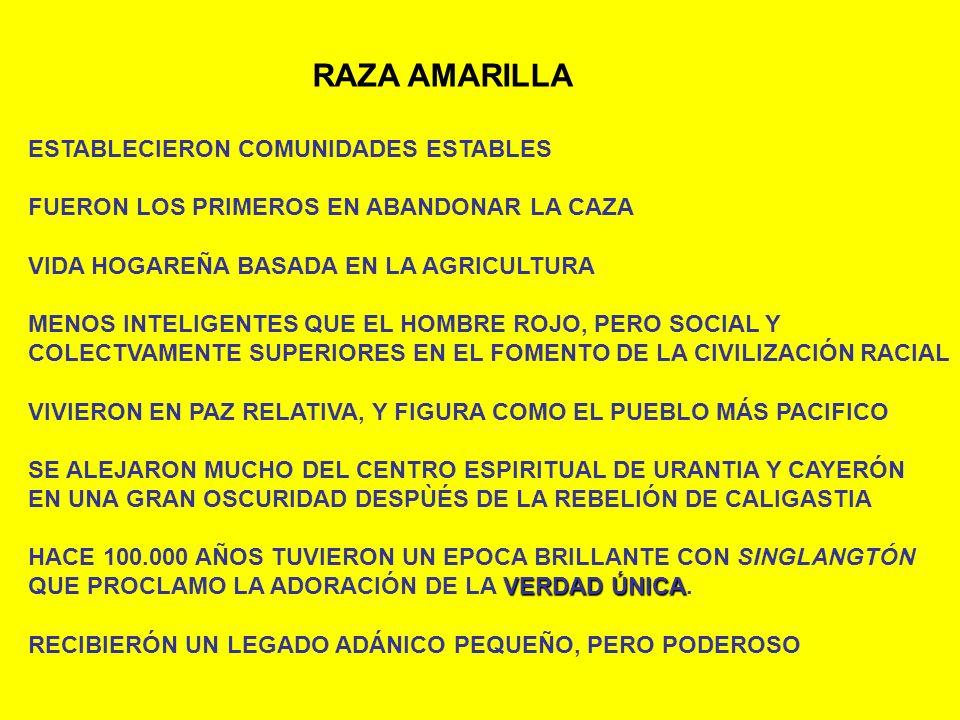 RAZA AMARILLA ESTABLECIERON COMUNIDADES ESTABLES