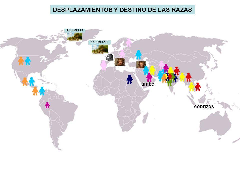 DESPLAZAMIENTOS Y DESTINO DE LAS RAZAS