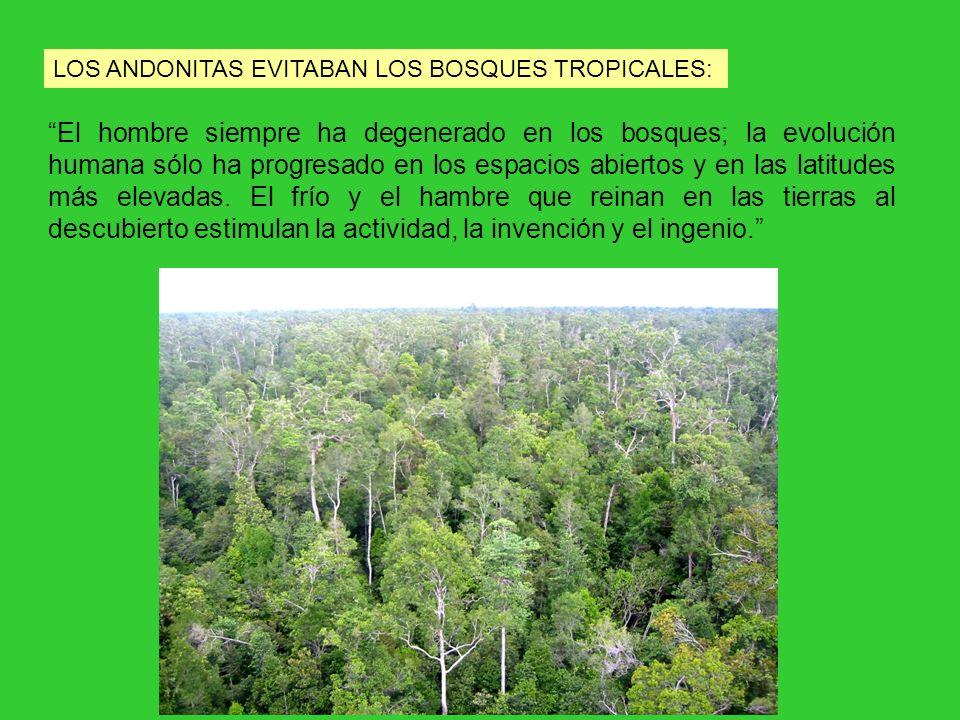 LOS ANDONITAS EVITABAN LOS BOSQUES TROPICALES: