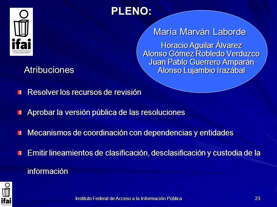 PLENO: María Marván Laborde Atribuciones Horacio Aguilar Álvarez