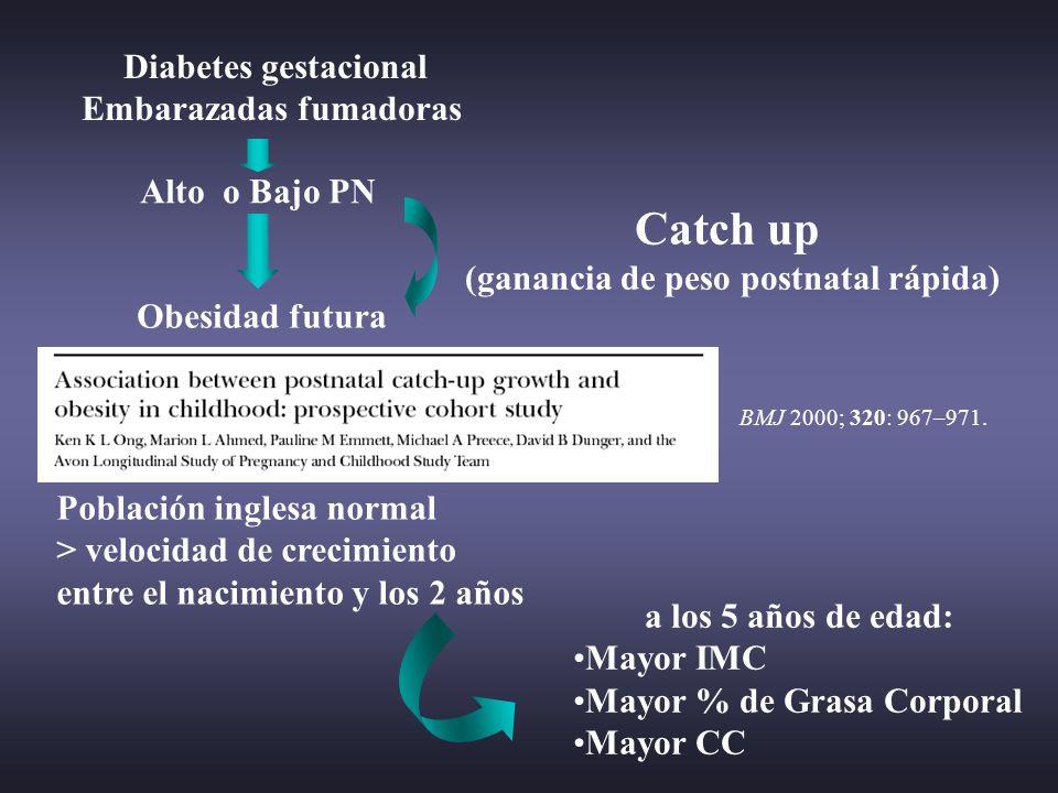 Embarazadas fumadoras (ganancia de peso postnatal rápida)