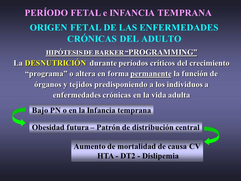 ORIGEN FETAL DE LAS ENFERMEDADES CRÓNICAS DEL ADULTO
