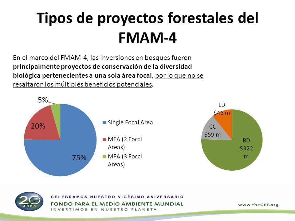 Tipos de proyectos forestales del FMAM-4