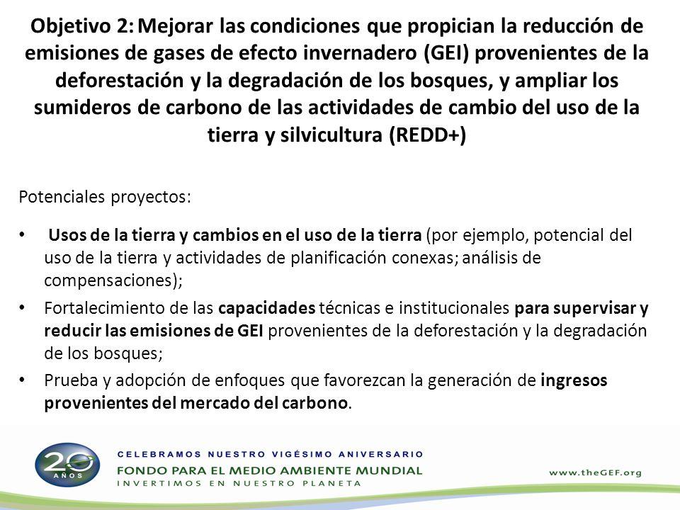 Objetivo 2: Mejorar las condiciones que propician la reducción de emisiones de gases de efecto invernadero (GEI) provenientes de la deforestación y la degradación de los bosques, y ampliar los sumideros de carbono de las actividades de cambio del uso de la tierra y silvicultura (REDD+)