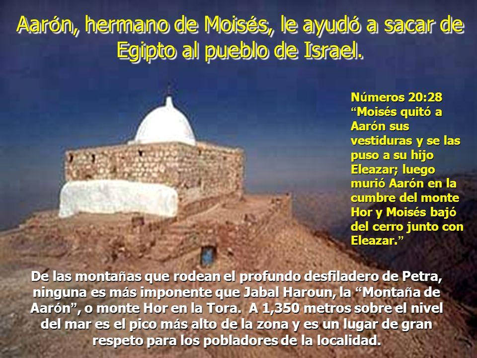 Aarón, hermano de Moisés, le ayudó a sacar de Egipto al pueblo de Israel.
