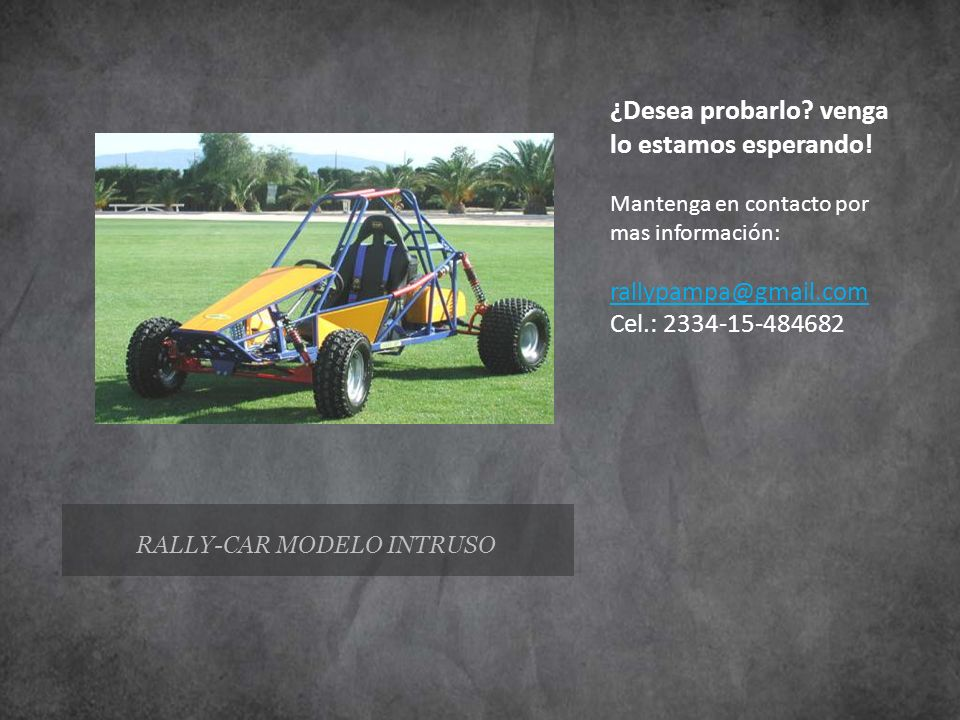 RALLY-CAR MODELO INTRUSO
