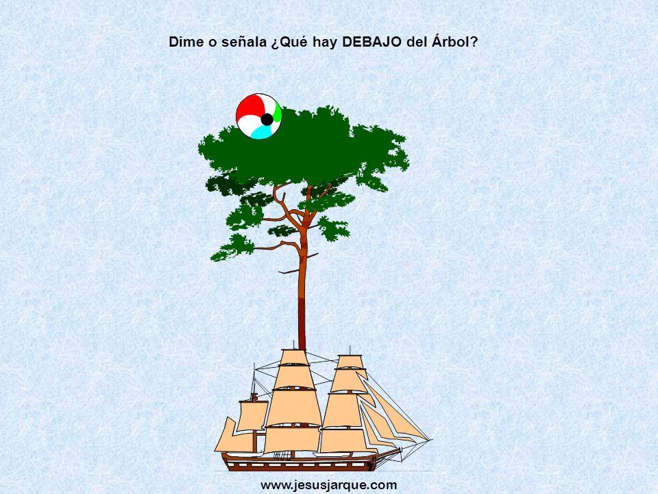 Dime o señala ¿Qué hay DEBAJO del Árbol