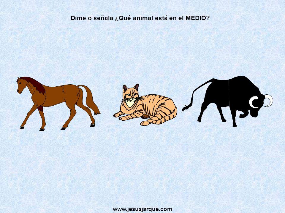 Dime o señala ¿Qué animal está en el MEDIO