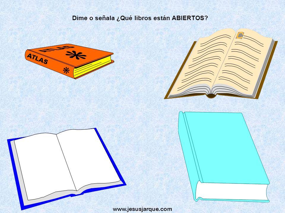 Dime o señala ¿Qué libros están ABIERTOS