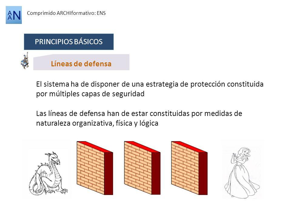 PRINCIPIOS BÁSICOS Líneas de defensa