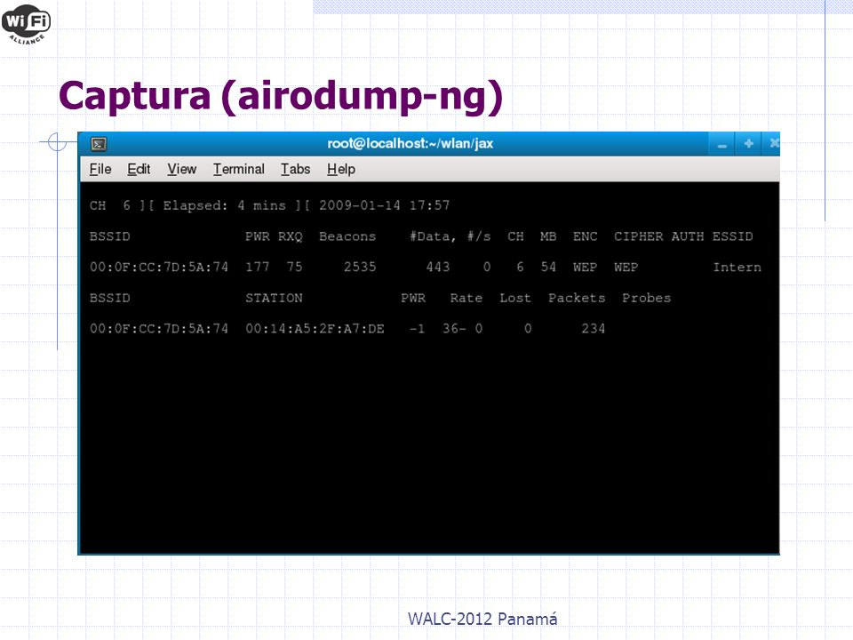 Captura (airodump-ng)