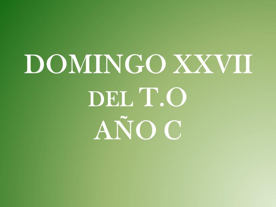 DOMINGO XXVII del T.O AÑO C