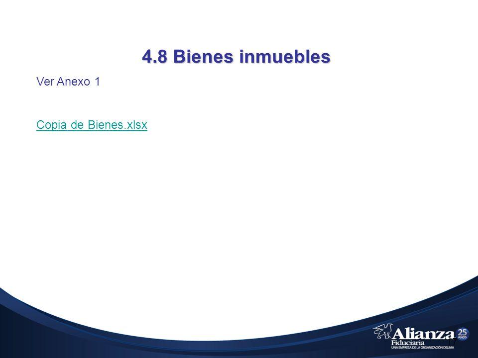 4.8 Bienes inmuebles Ver Anexo 1 Copia de Bienes.xlsx